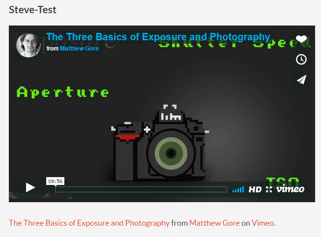 Embedded video on the web page